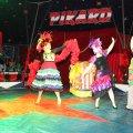 image charity_zirkus_2015009-jpg